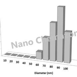 Neodymium Iron Boron Nanoparticles and Nanopowder
