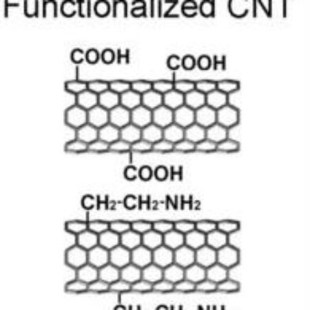 Functionalized Short SWCNT-Single Walled Carbon Nanotubes