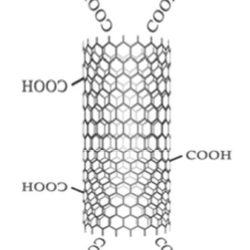 MWCNT Functionalized Multiwalled Carbon Nanotubes