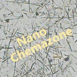 Titanium Dioxide Nanowires