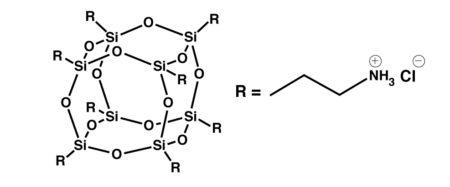 Octa Ammonium POSS